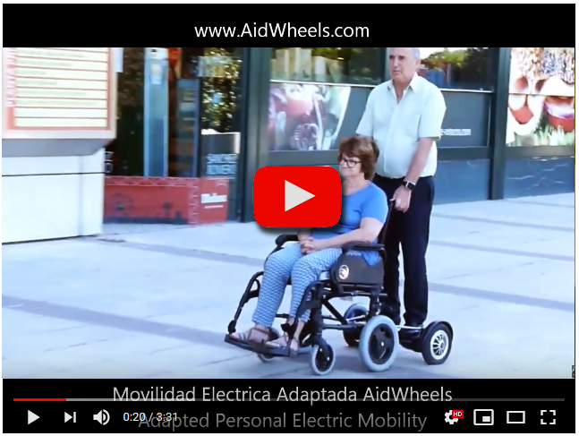 Electric Personal Assistive Mobility Devices