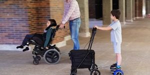 electric wheelchairs trolley cart